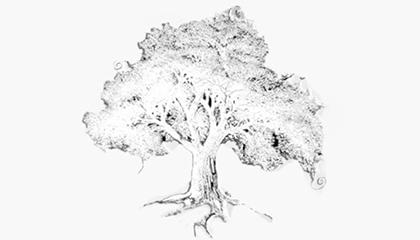 get-involved-tree
